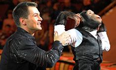 Дан Запашный: «Шимпанзе Мальта ревнует меня к невесте»