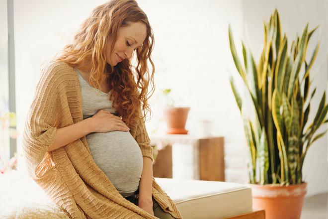 Какие анализы и обследования нужно проходить на разных сроках беременности