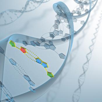 Имея на руках полный геном, ученые могут искать в нем гены тех или иных важных белков, сравнивать их со сходными генами других организмов, определять, чем отличаются родственные гены и как они изменялись в ходе эволюции.