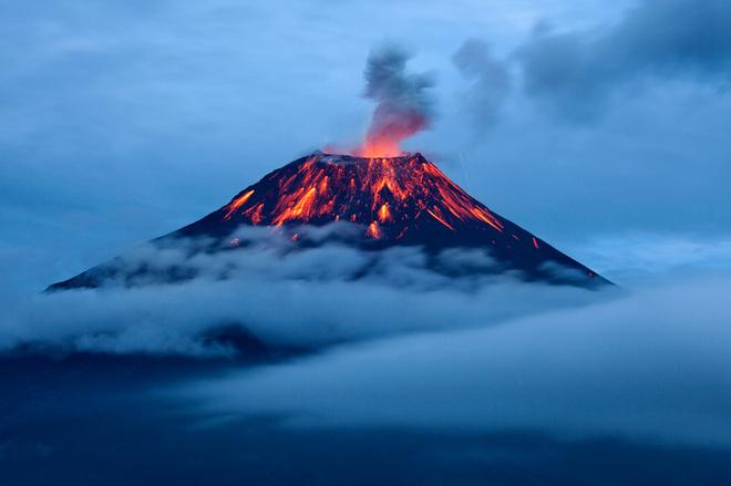 сонник вулкан