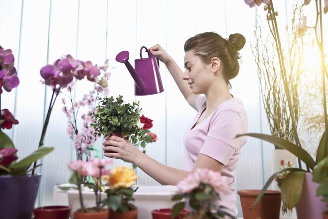 Как поливать цветы?