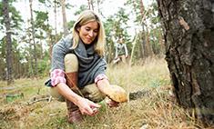 Топ-20 грибных мест Самарской области