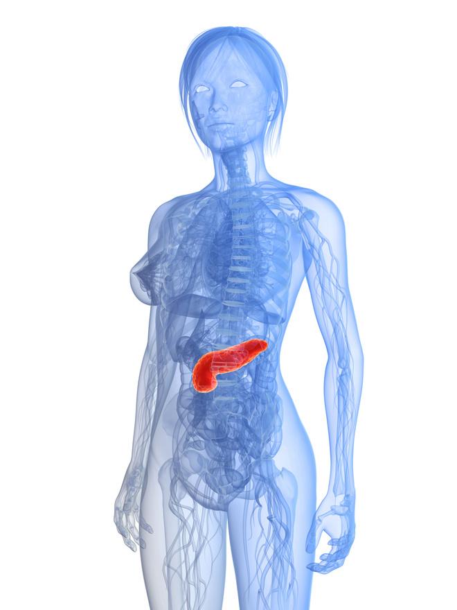 воспаление поджелудочной железы признаки