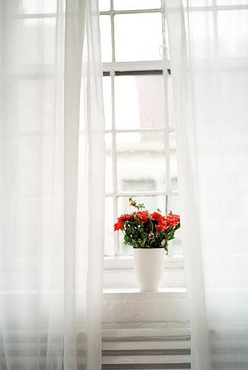 Испанские специалисты предлагают распылять в офисах микс из ароматов белого чая, бергамота и восточных пряностей.