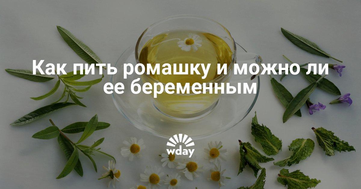 при аллергии ромашку пить можно