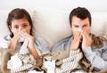 Правда и мифы о простуде и гриппе