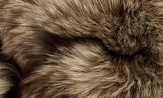 Меховой жилет – надежная защита от холода