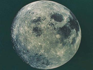 Лунная оранжерея