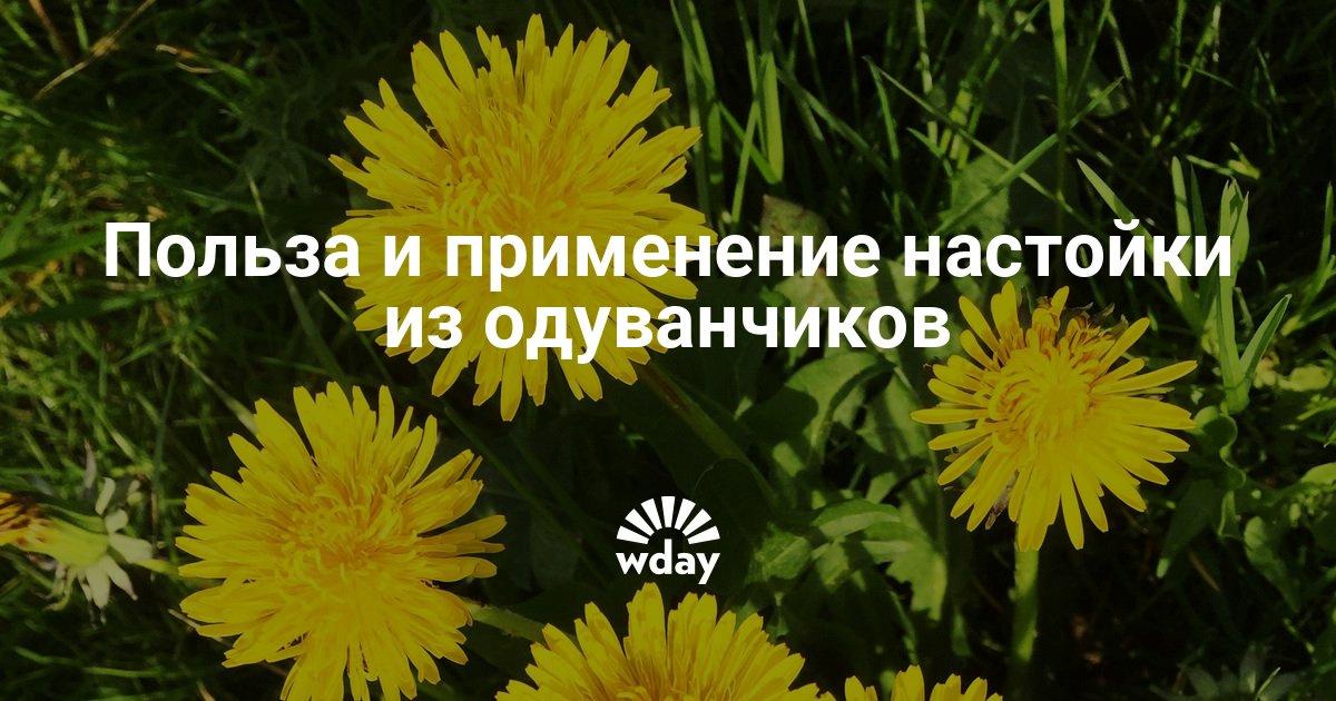 Одуванчик на спирту для суставов россия 1 о главном упражнения на тренажере для суставов