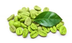 Новая популярная диета на зеленом кофе: узнаем правду