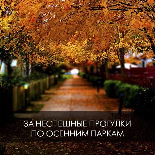 1. За неспешные прогулки по осенним паркам