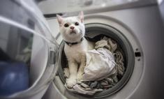 Эффективно и просто: как стирать постельное белье