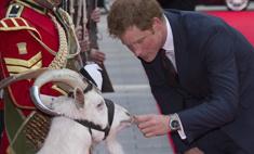 Принц Гарри станцевал на красной дорожке с козой