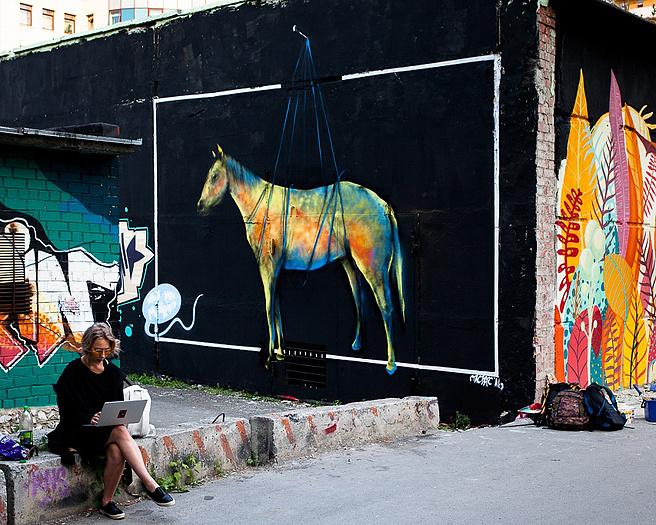 Картина «Лошадь в телевизоре», фестиваль «Стенограффия», фото