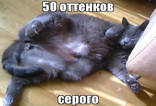 """Премьера фильма """"50 оттенков серого"""" фото смотреть бесплатно"""