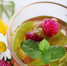 Травяные чаи: дачные рецепты