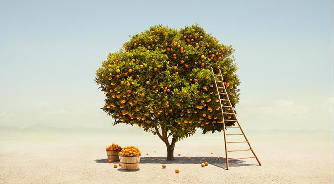 «Измерять свою ценность карьерными достижениями – большая ошибка»