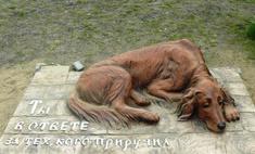 Под Красноярском установили памятник бездомной собаке