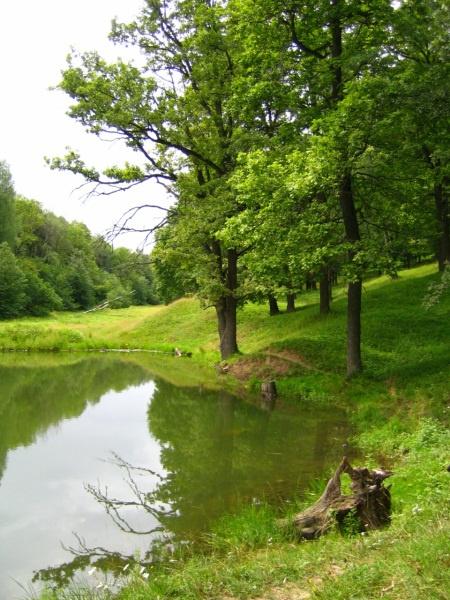 Косогорский пруд