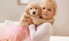 Человек собаке друг: питомцы защищают детей от гриппа