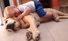 Вредные поцелуи: почему собаке нельзя облизывать ребенка