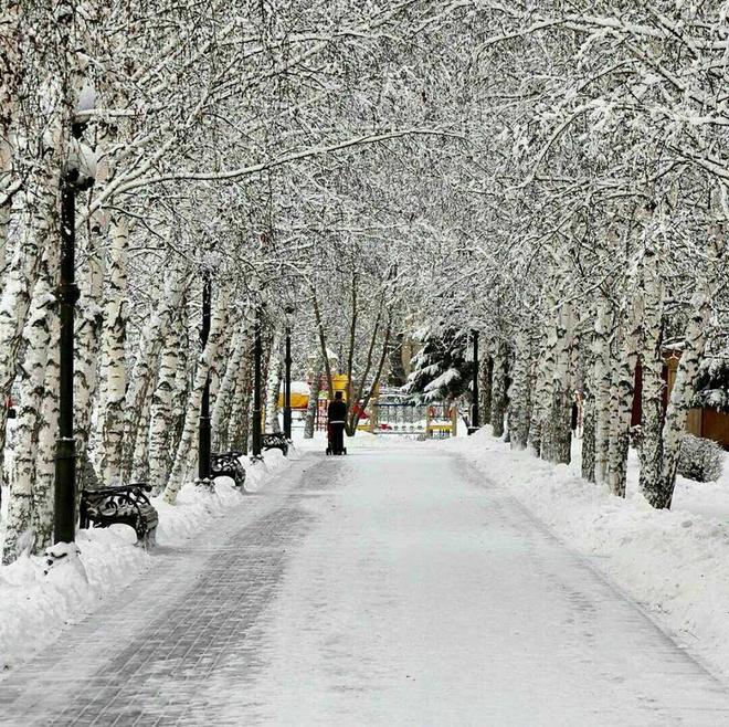 Зимние пейзажи: Сибирь