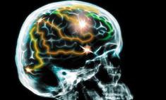 В головном мозге человека обнаружен «центр общительности»