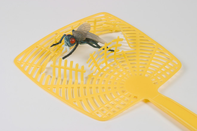 много мух в доме