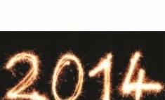 Пермяки назвали главные события 2014 года