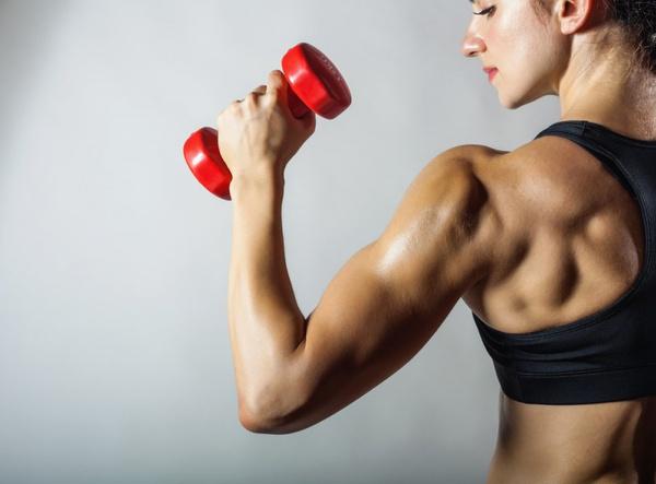 питание для роста мышечной массы