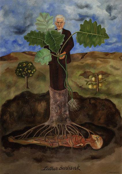 Открылась выставка Фриды Кало | галерея [1] фото [5]
