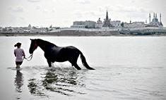 Купание казанского коня и еще 30 интересных снимков, сделанных юными фотографами