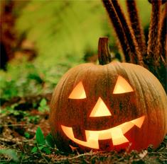 Хеллоуин: 10 идей для мистического интерьера