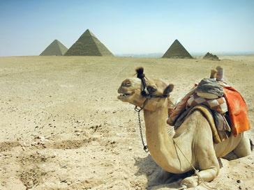 Музеи Египта стали жертвами мародеров
