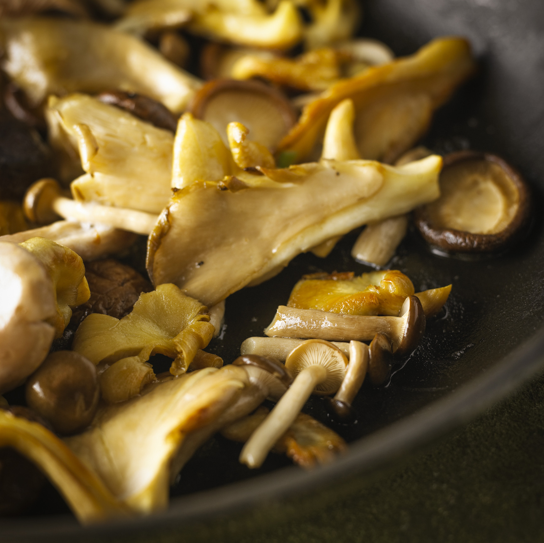 Способы заготовки и приготовления гриба лисичка