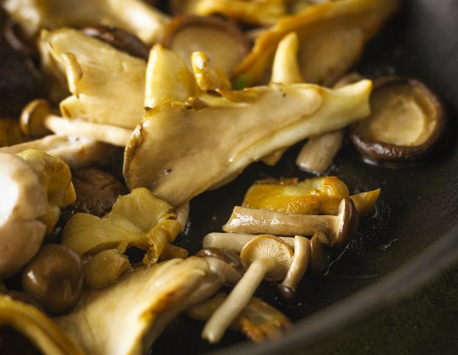 лисички грибы фото как приготовить