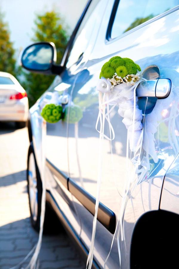 Свадебное путешествие на машине