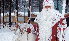 Что дарить на Новый год: выбор Деда Мороза