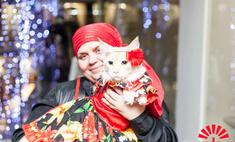 «Золотая кошка» поздравила пензенцев с добрым Новым годом