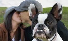 Домашние животные помогают в личной жизни