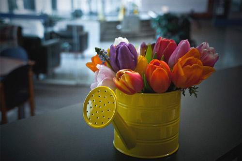 Возьмите за правило каждый понедельник радовать себя небольшим букетом свежих цветов.