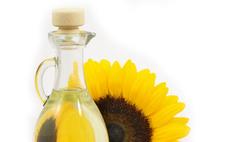 Какие растительные масла вы знаете? Путешествие в Масляндию