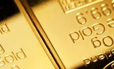 Двадцать грабителей не смогли взломать российский сейф с золотом