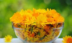 Рецепты лечения цветами календулы