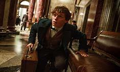 Эдди Редмэйн: «Я боялся подвести фанатов Гарри Поттера»