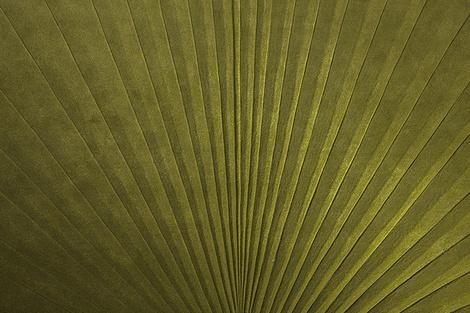 Дизайнер Микаэла Шляйпен представила новую коллекцию ковров   галерея [1] фото [1]