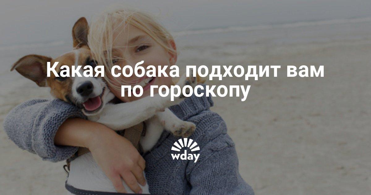 Какая собака подходит вам по гороскопу - Woman's Day