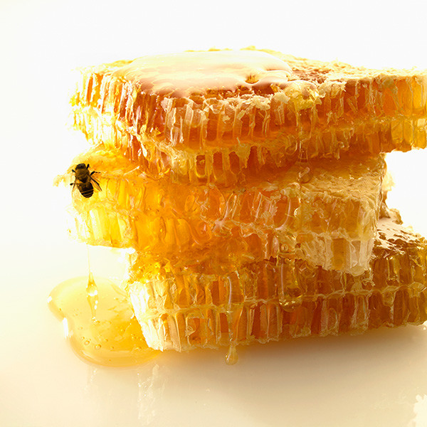 Донниковый мед полезен для сердца