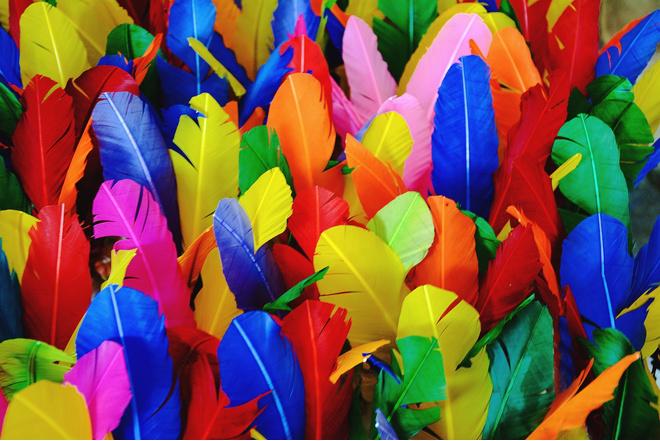 как покрасить обычные перья в яркий цвет