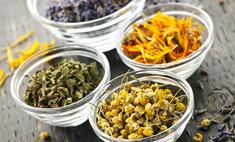Чем лечить простуду: лекарственные травы против таблеток